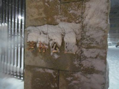 芳林公園 雪 2014年2月8日