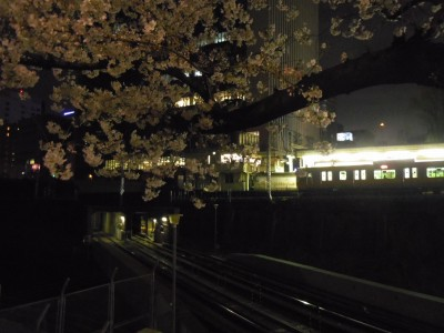 2014年3月29日 御茶ノ水 丸ノ内線 さくら 桜