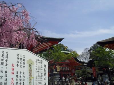 関西の一人旅 三日目 伏見稲荷神社 いなり、こんこん、恋いろは さくら