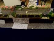 城北学園 鉄道模型コンテスト2014