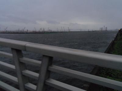 東京ビックサイト 新木場 大雨 東京湾