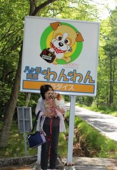 八ヶ岳わんわんパラダイス        5月31日(2) (881x1280)