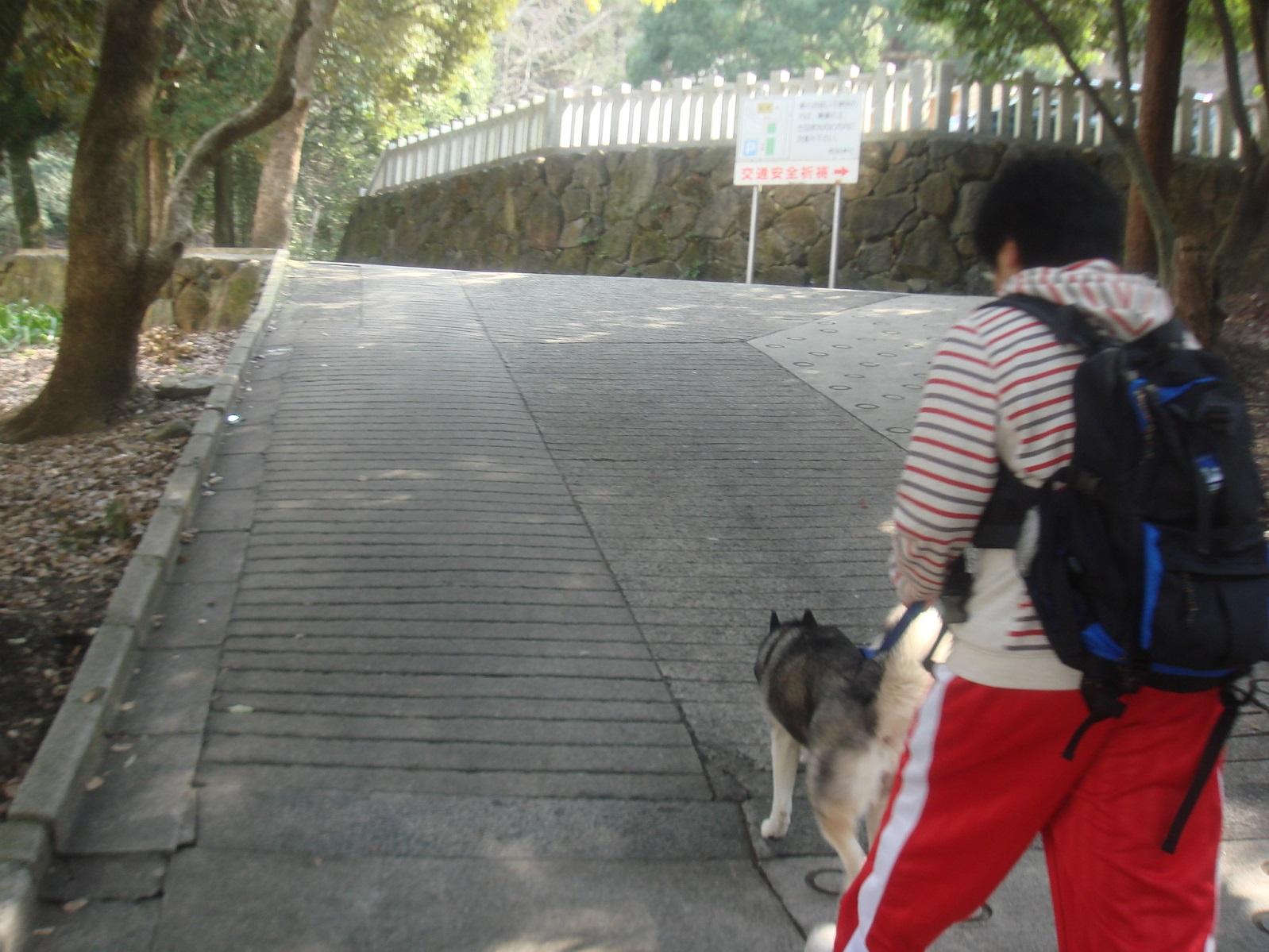 枚岡神社横の山道入口