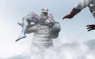 Frozen(10).jpg