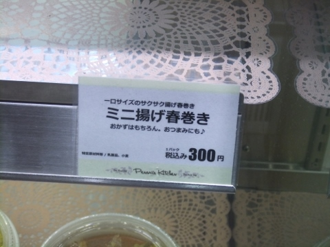 DSCF9466 (480x360)