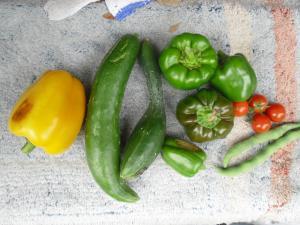 7-17収穫