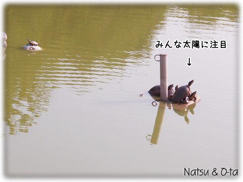 14070408.jpg