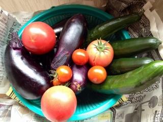 20140627野菜