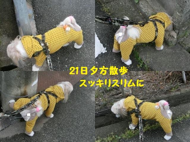まる422