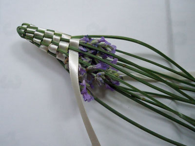 lavender02.jpg