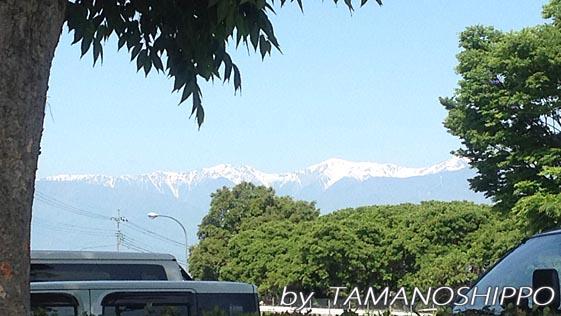南アルプス山脈?