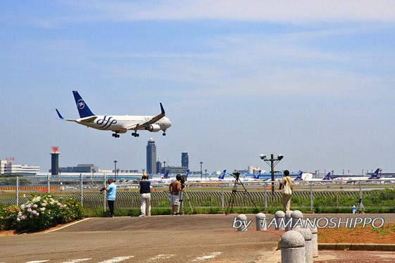 成田空港 さくらの山公園にて