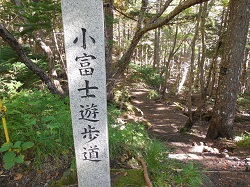 富士92113