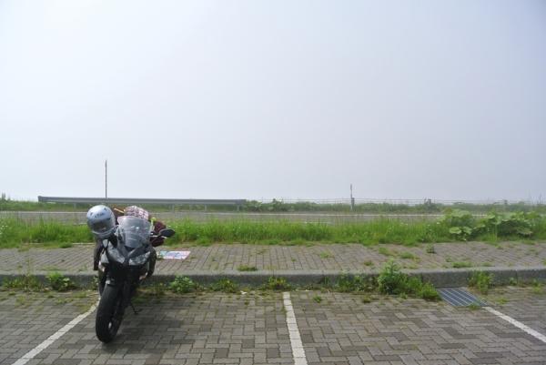 DSC_8784.jpg