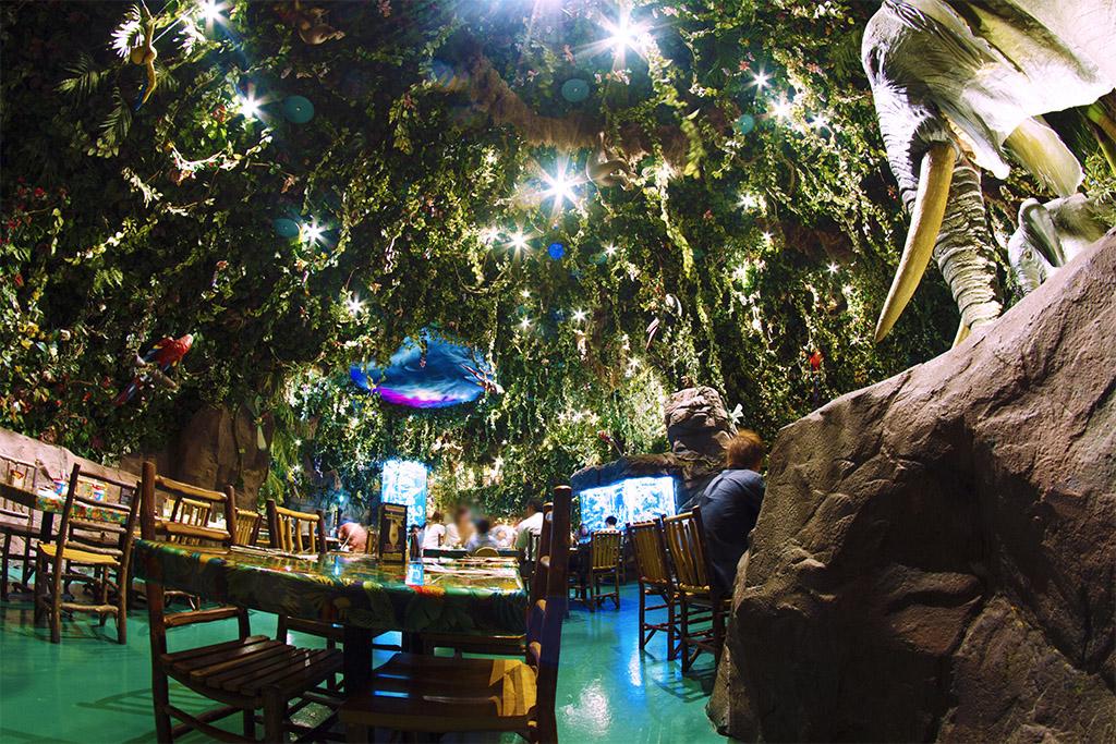 ゾウさんのいるカフェ(レインフォレスト カフェ)