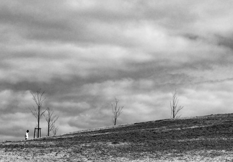 2014-02-11_3400-2b-750.jpg