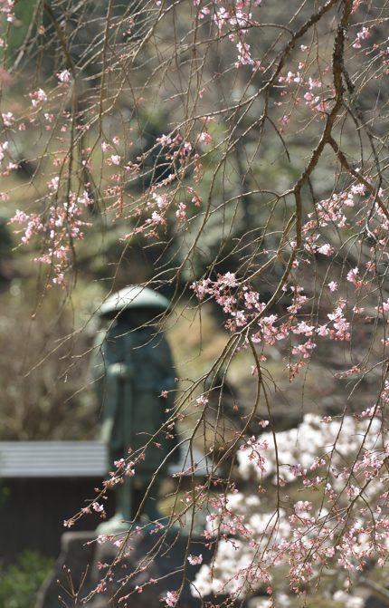 2014-03-28_5323-2-430.jpg