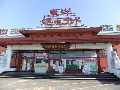 toyo_gifu10.jpg