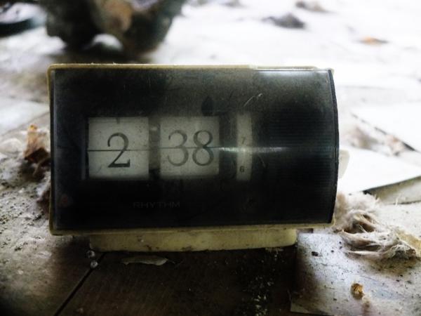 DSCF5158 (600x450)