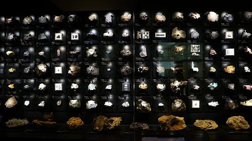 国立科学博物館(東京上野)