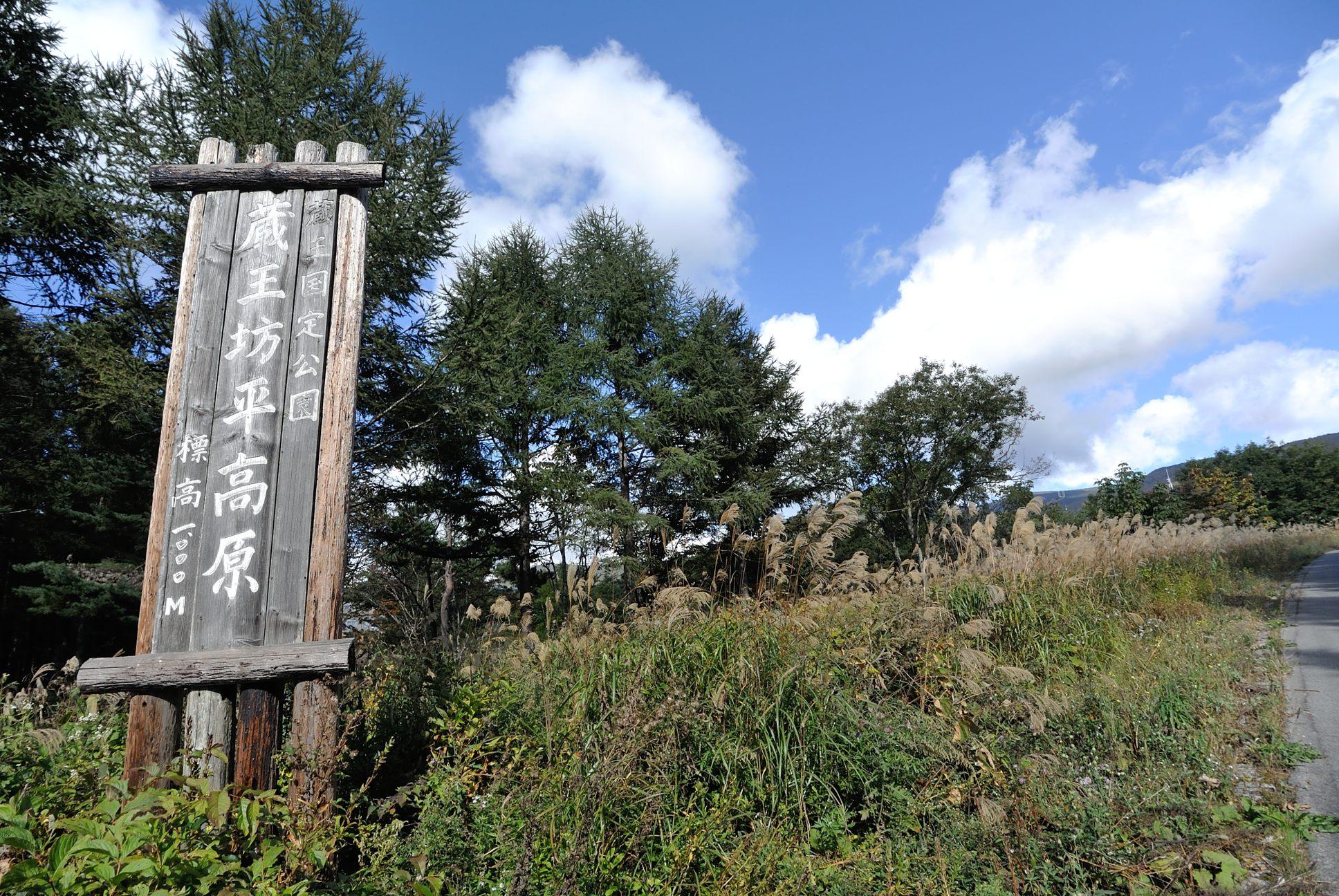 標高1000m森林限界が近いな