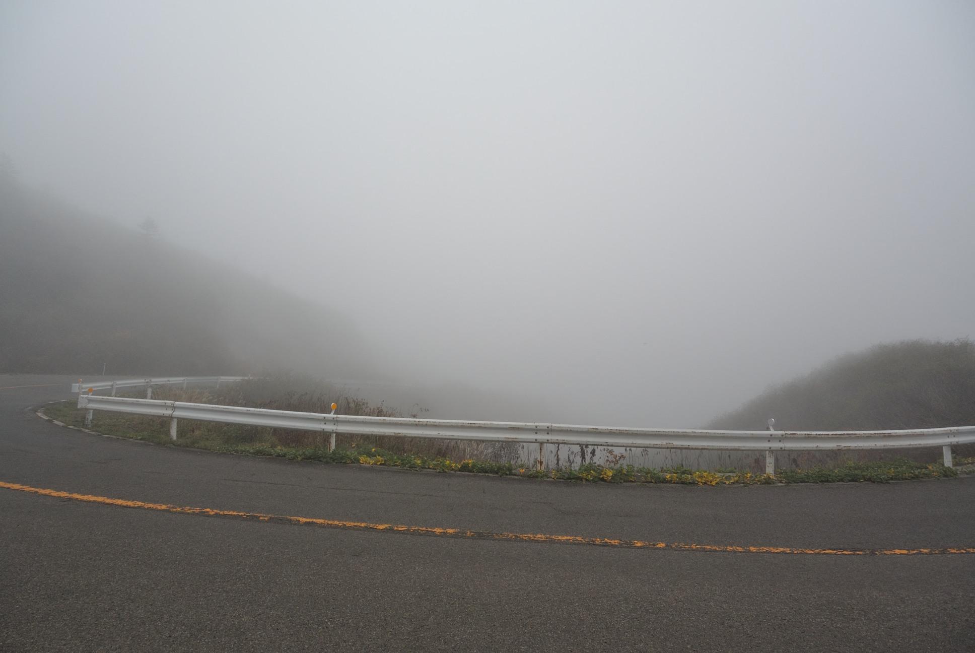 五里霧中ってこういうことを言うんだろうな