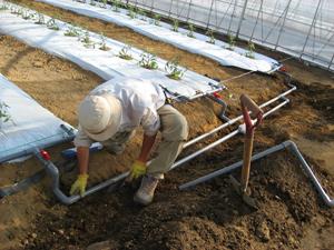 ハウス灌水設備2