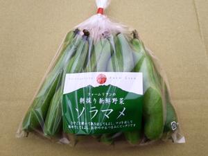 野菜メンバー2