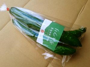 エントリー野菜1