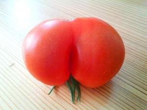 変わりトマト2