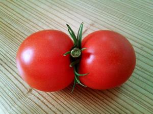 変わりトマト4