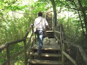 階段ズンズン
