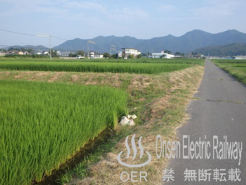 blog_import_540d6354ee1f6.jpg