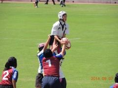 2014-09-07_020.jpg