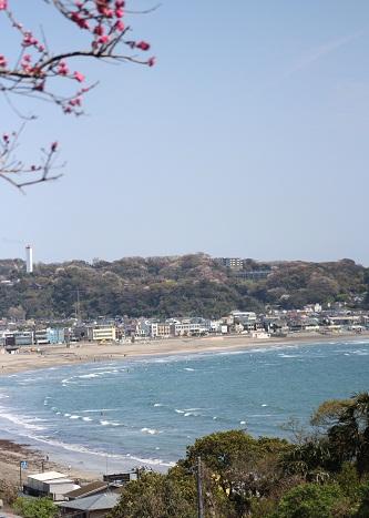 長谷からの海