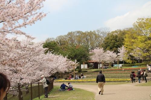 鶴見緑地 お散歩撮影会