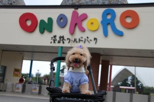 ONOKORO