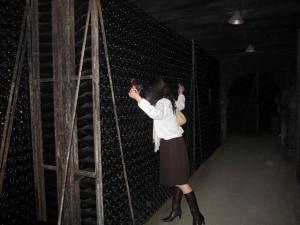 vin11.jpg