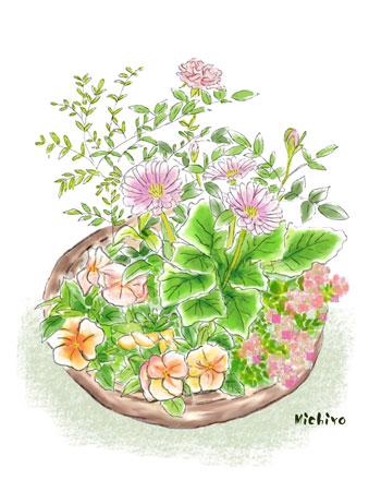 寄せ植えの花