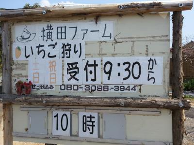 横田ファーム