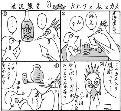 kameiri2014.jpg