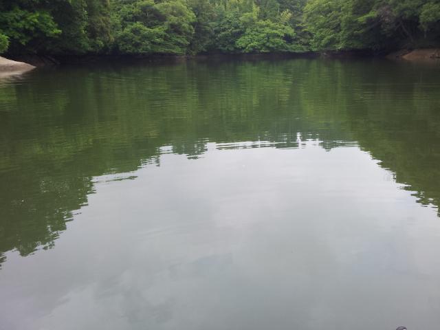A池へ逃走AM9時