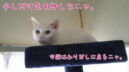 2014-04-10-5.jpg