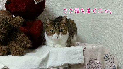 2014-09-5-3.jpg