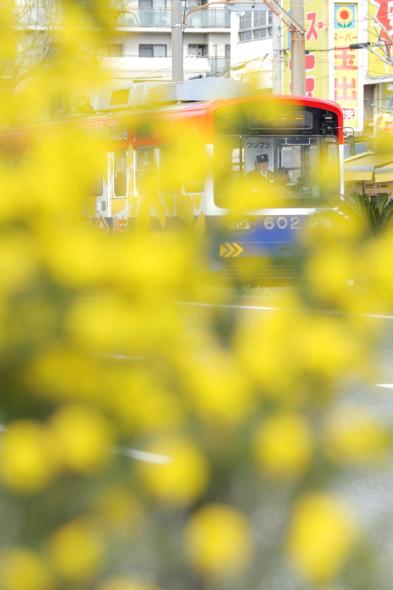 2014/3/29 阪堺電軌阪堺線 妙国寺前