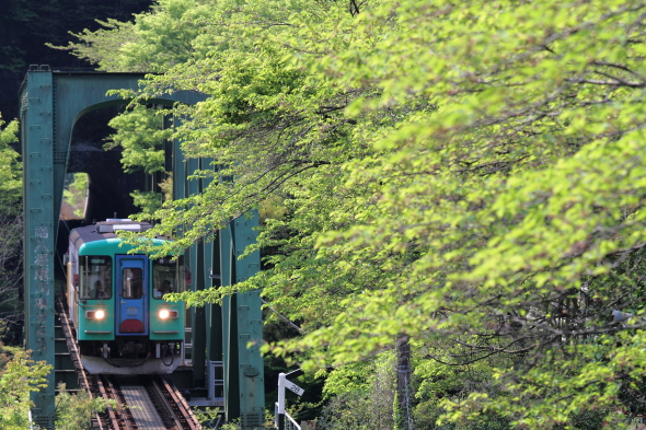 2014/4/26 樽見鉄道 日当