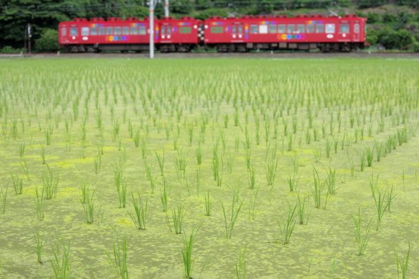 2008/6/14 和歌山電鐵貴志川線 吉礼~伊太祈曽