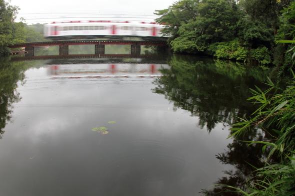 2010/7/3 和歌山電鐵貴志川線 大池遊園