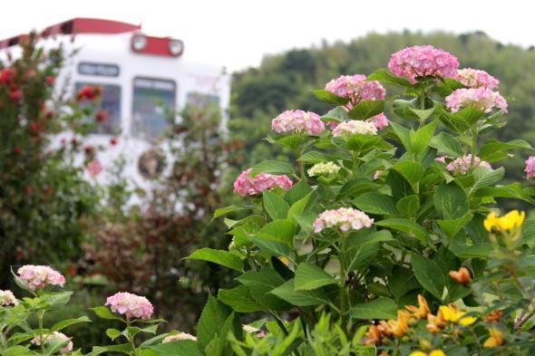 2009年6月 和歌山電鐵貴志川線 吉礼~伊太祈曽