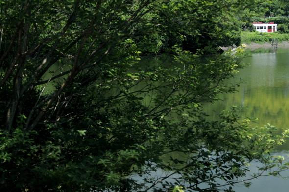 2014/7/12 和歌山電鐵貴志川線 大池遊園